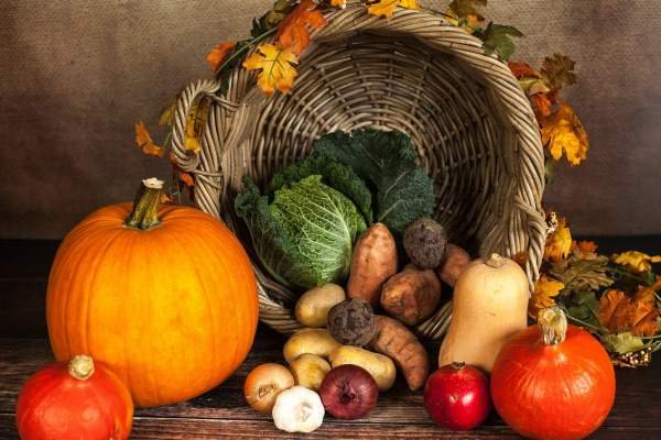Économiser avec les légumes de saison