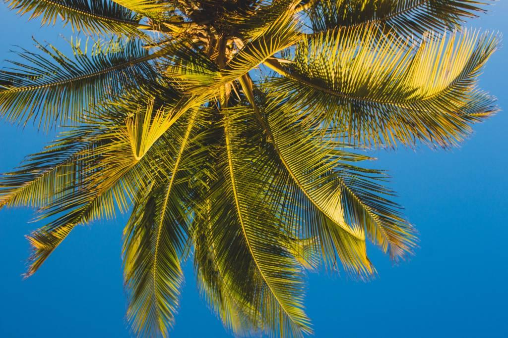 Emigreren naar Saba