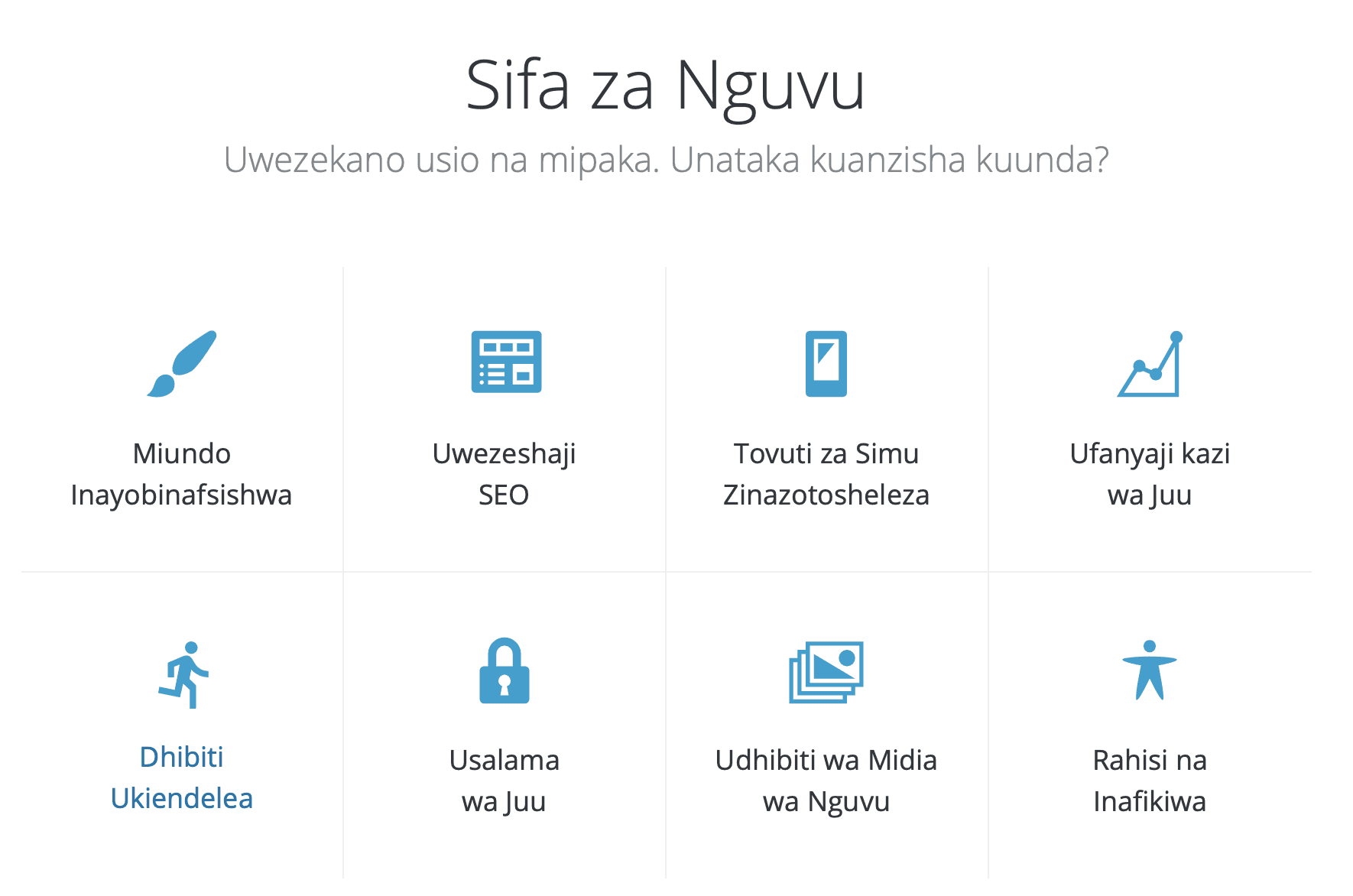 7 Months: FiFi Swahili, FiFi German, Medical Translation and WordPress in Swahili